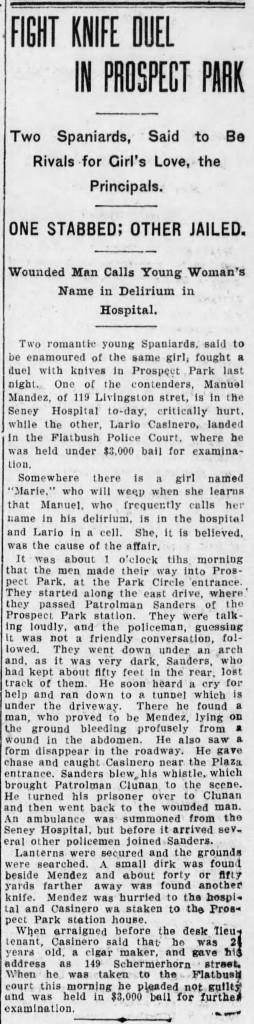 the_brooklyn_daily_eagle_wed__dec_14__1910_